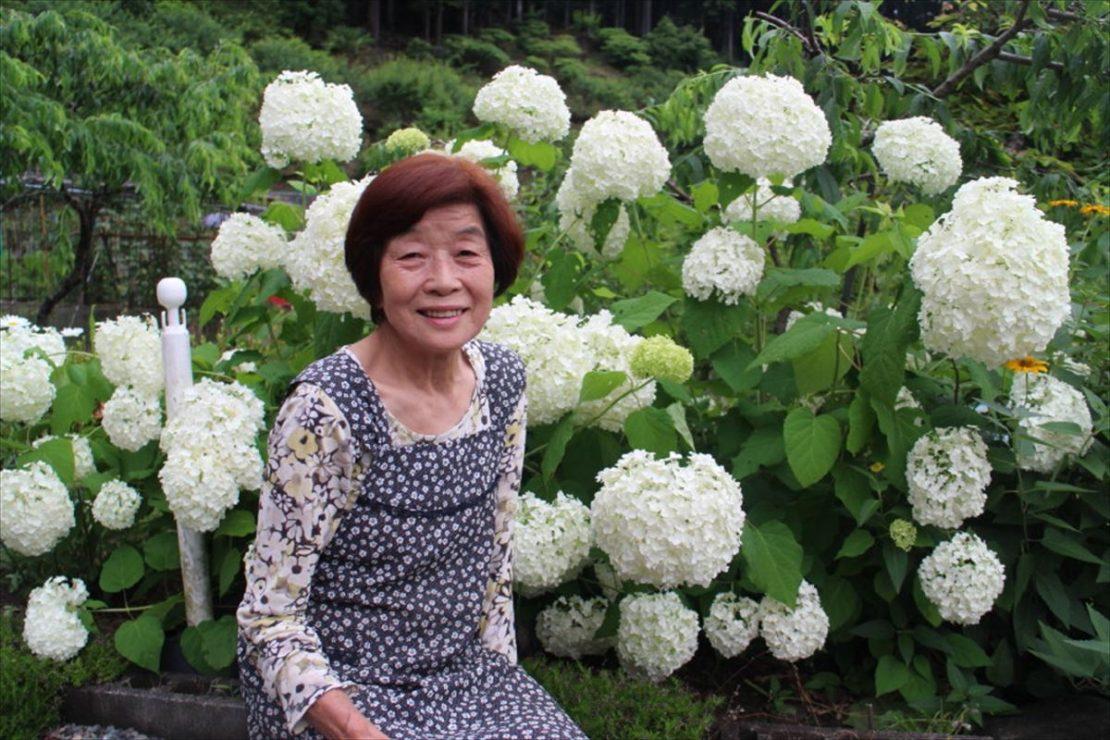 季節の花々を愛でる手作りの暮らし~梅の簡単アレンジレシピ~