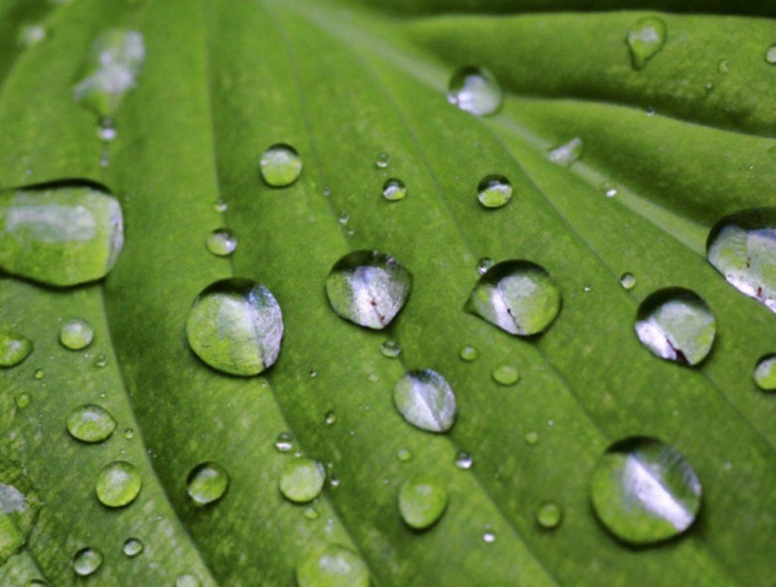 湿度管理で夏も快適 シニアの家づくり その8