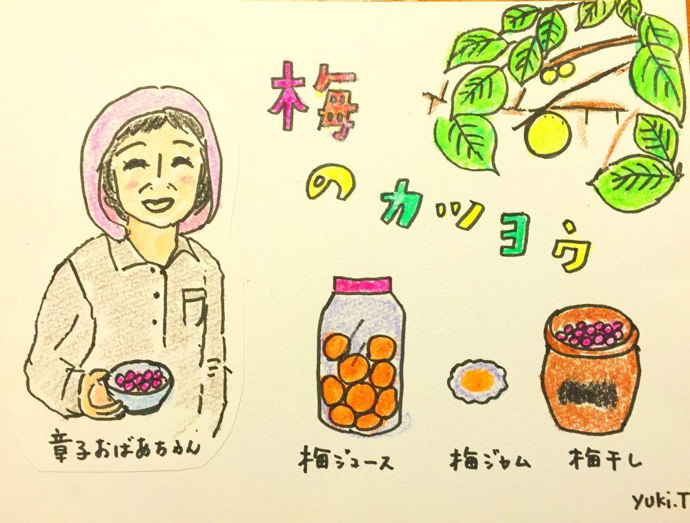 梅の産地ならではの活用法!山梨のおばあちゃん直伝「梅レシピ」(第2回)