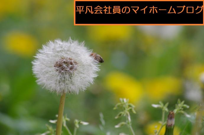 [HINOKIYA]平凡会社員のマイホームブログ