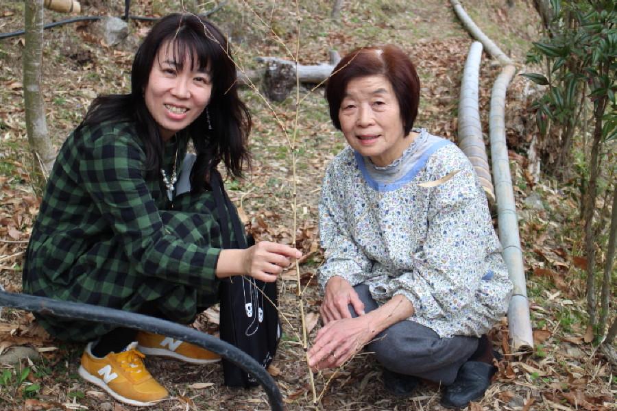 おばあちゃんから伝授!何十年も花を咲かせるコツ